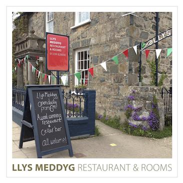 Llys Meddyg Image & Logo (small)